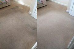 Bonne Fresh Clean - Premium quality carpet cleaner in Yate