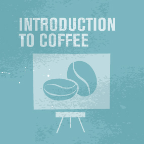 SCAE_Logo_CDS_Introduction_to_Coffee