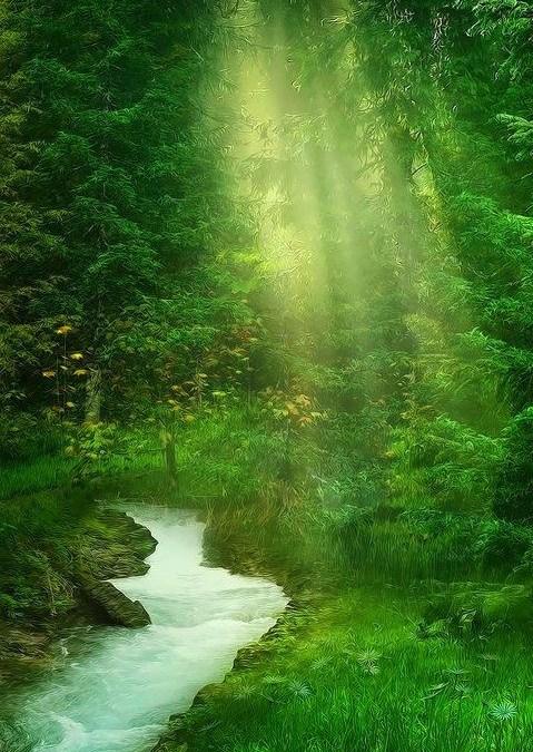 Meditation for Chronic Pain