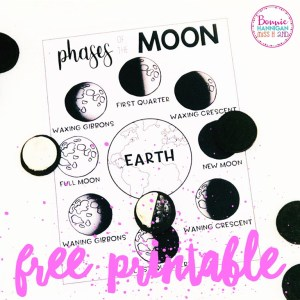 Phases of the Moon Free Resource