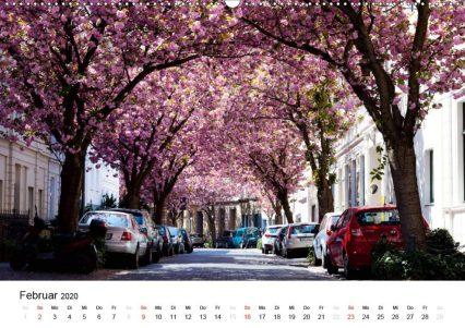 Bonn - Kirschblütenfest in der Altstadt (Wandkalender 2020 DIN A2 quer)