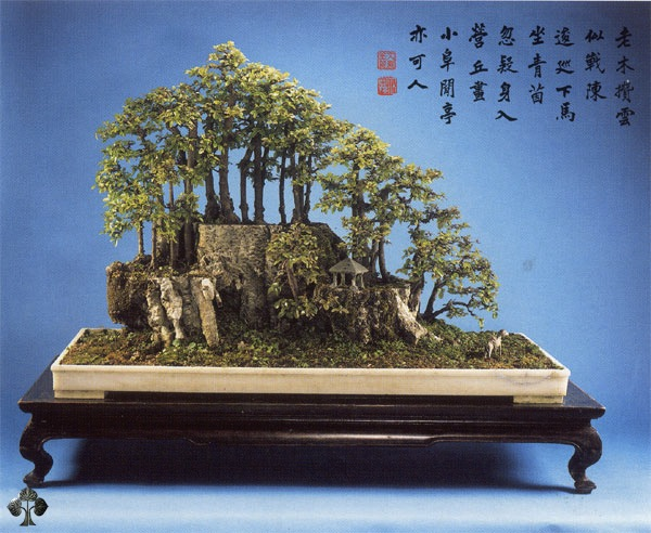 Manlung Chinese Penjing landscape