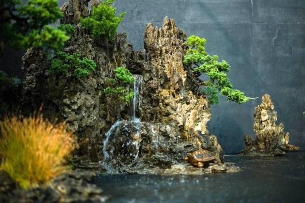 bonsai landscape - empire