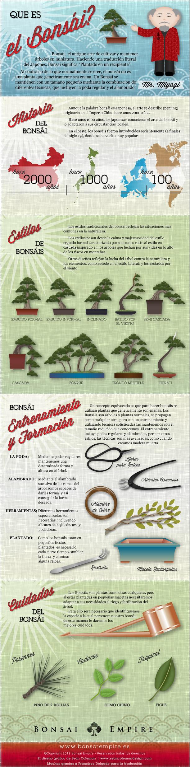 Bonsai infografico