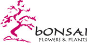 Bonsai flowers and plants