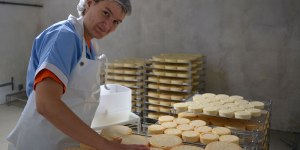 Fabrication de fromages
