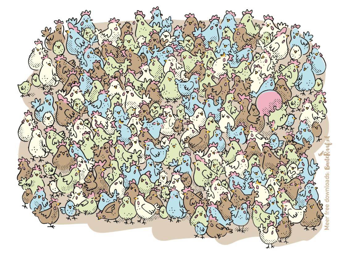 Illustratie zoekplaatje kippen pasen voorjaar spelletje