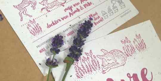 Geboortekaartje groeipapier