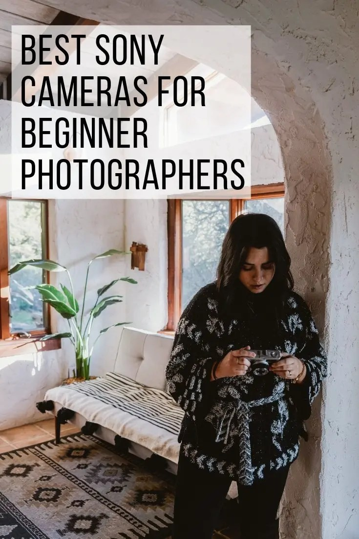 Best Sony Cameras for Beginner Photographers