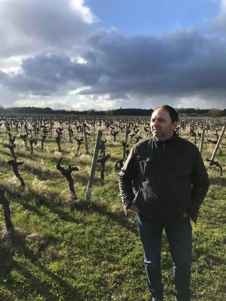 Cépages oubliés de Bordeaux