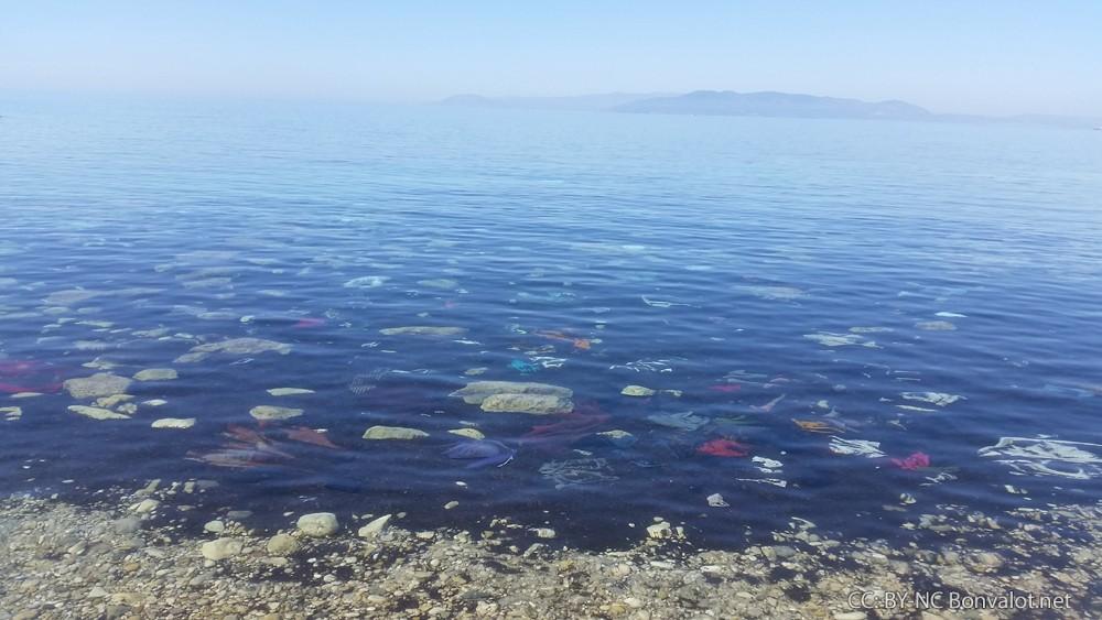 Kleidung treibt in der Bucht von Dikili an der türkischen Ägäis-Küste. Im Hintergrund die Insel Lesbos. Bild: Michael Bonvalot