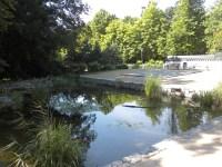 The Korean garden in Frankfurt