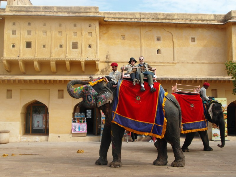 Hot air balloon, elephants and peacocks – Jaipur !