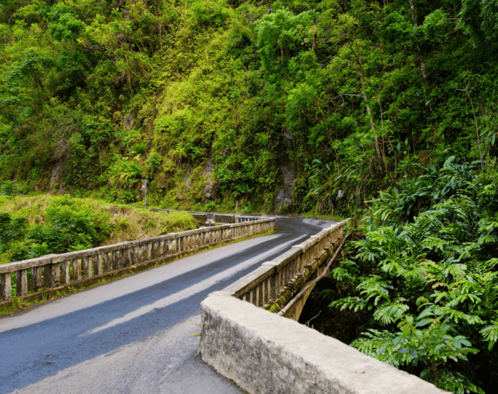 things-to-do-in-maui-with-kids-road-to-hana