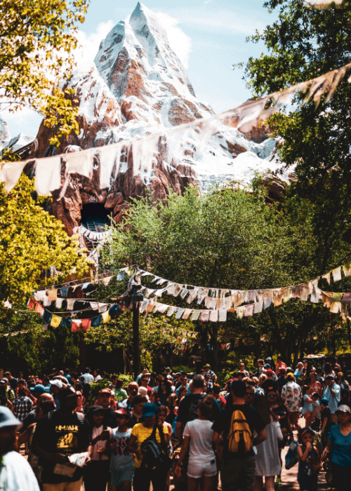 best things to do at disney world with teens - everest ride in animal kingdom park