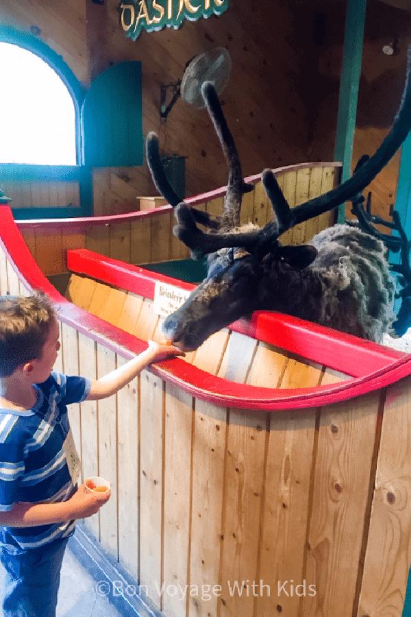 Feeding Reindeer at Santa's Village