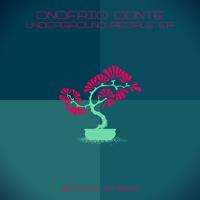 ONOFRIO CONTE – UNDERGROUND PEOPLE EP (BONZAI BASIKS)
