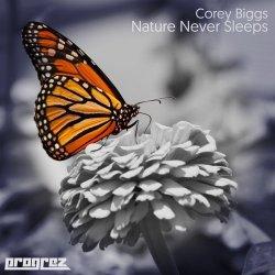 Nature Never Sleeps