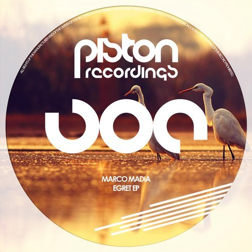 MARCO MADIA – EGRET EP (PISTON RECORDINGS)