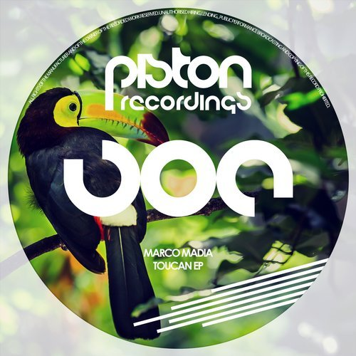 MARCO MADIA – TOUCAN EP (PISTON RECORDINGS)