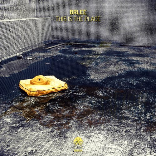 BRLEE – THIS IS THE PLACE (BONZAI PROGRESSIVE)