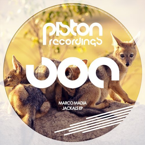 MARCO MADIA – JACKALS EP (PISTON RECORDINGS)