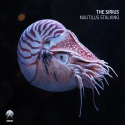 Nautilus Stalking