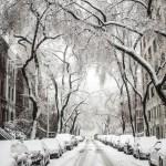 poesia L'odore dell'Inverno di anton cechov