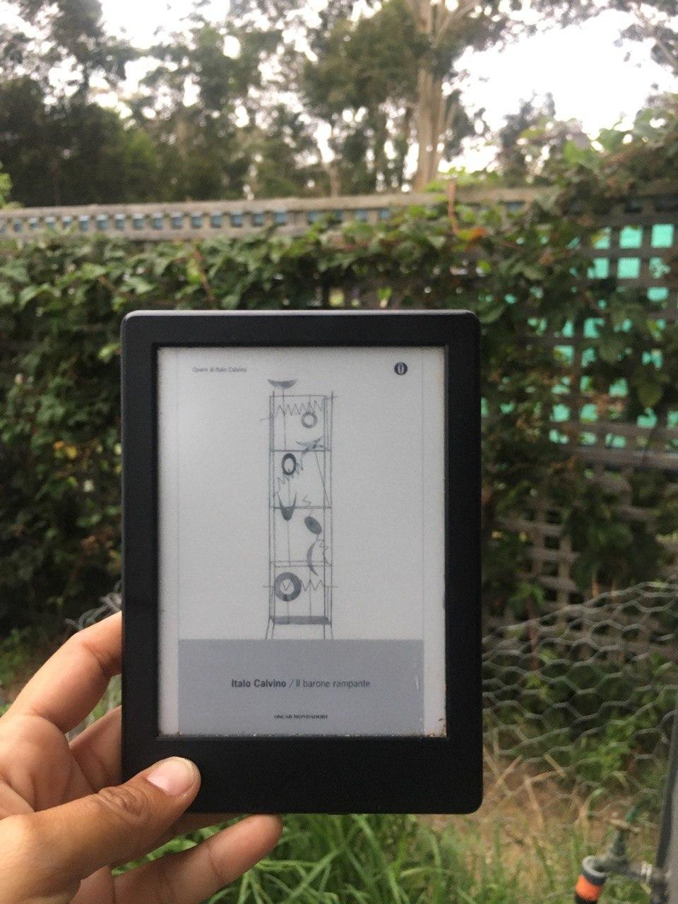 il barone rampante libri e natura consigli di lettura