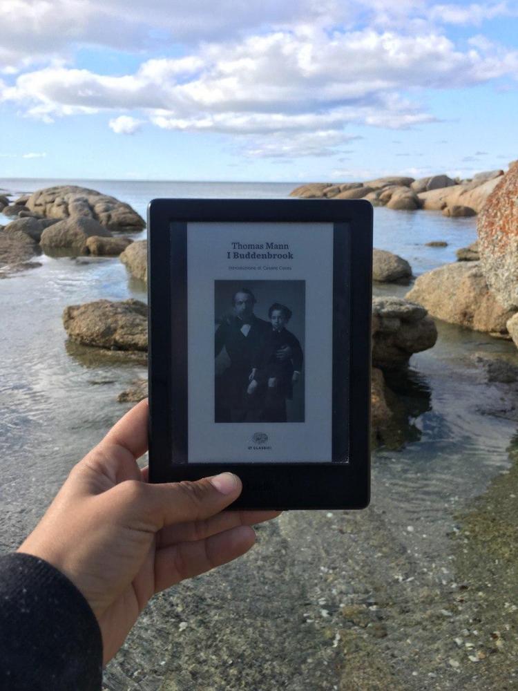 i buddenbrook recensione libro thomas mann