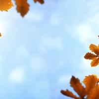 La poesia della settimana: Settembre di Gabriele D'annunzio