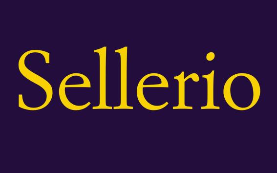 sellerio editore www.sellerio.it