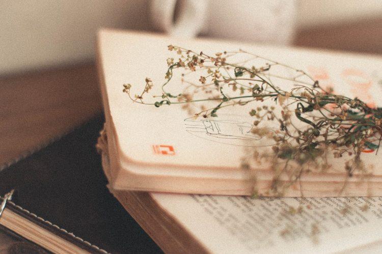 La poesia della settimana: Cosa è la vita? di Samuel Taylor Coleridge