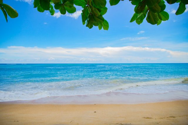 beautiful white sands in Panglao Island