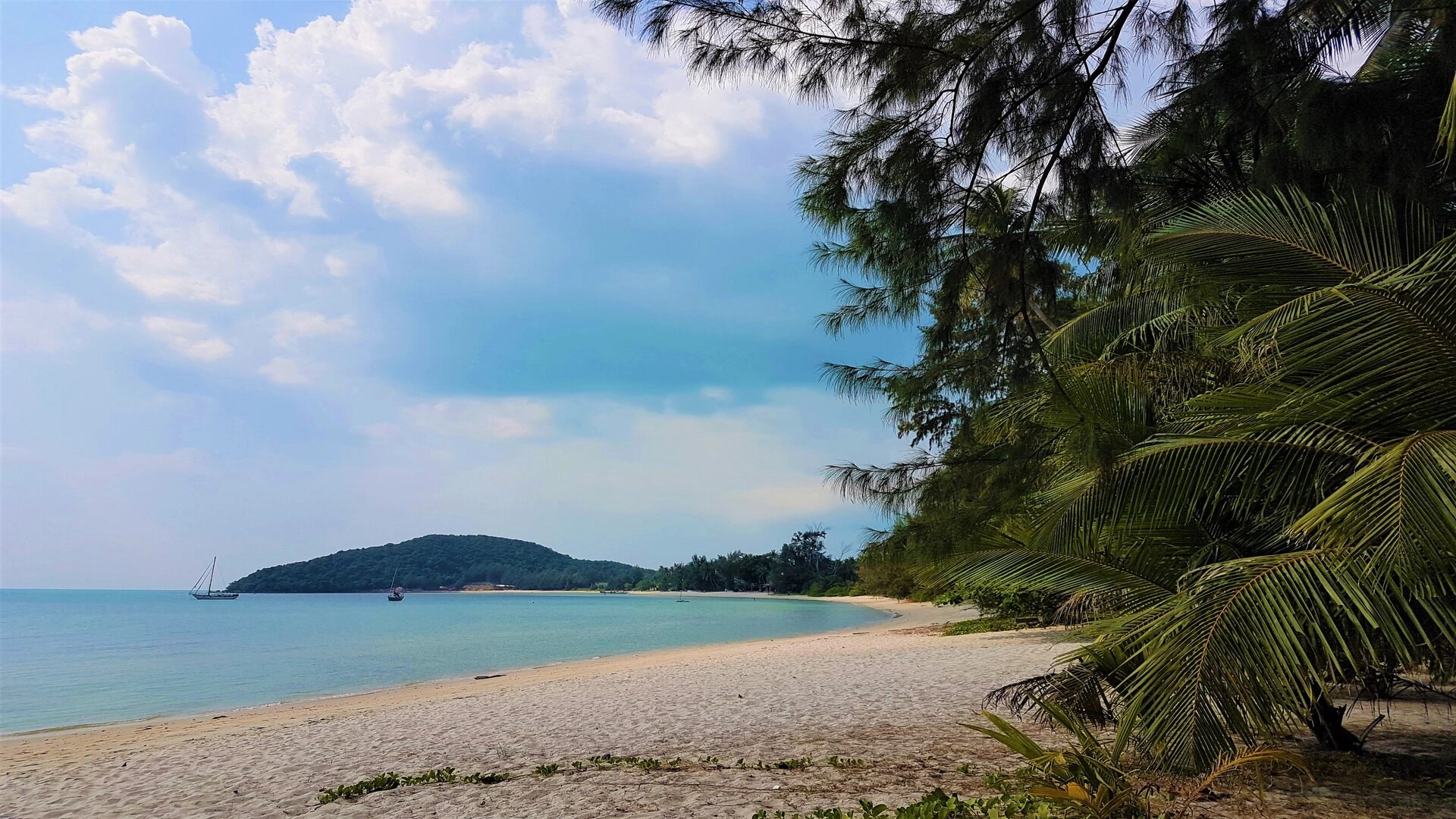 The ride from Phuket to Koh Samui: A traveler review
