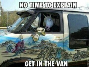 unicorn in a van