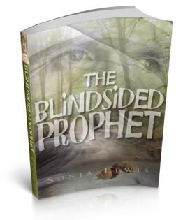 Blindside_CVRpb_3D-front-72 thumbnail