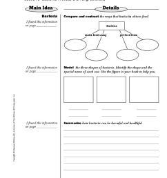 glencoe science notebook florida science grade 6 page 10497904 book 435849 bookemon [ 918 x 1188 Pixel ]