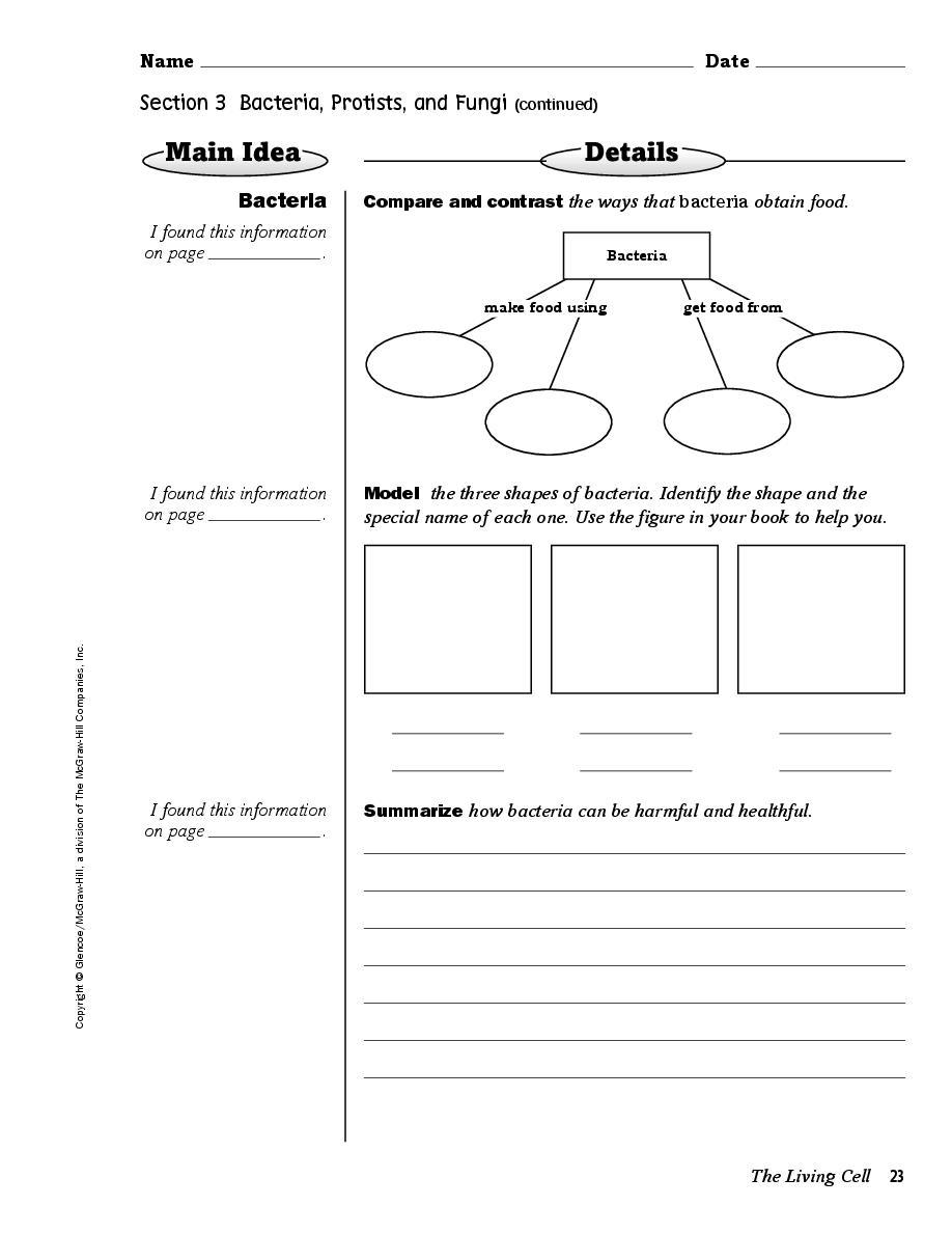 medium resolution of glencoe science notebook florida science grade 6 page 10497904 book 435849 bookemon