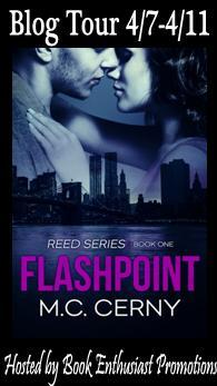 Flashpoint-blog-tour-button.jpg