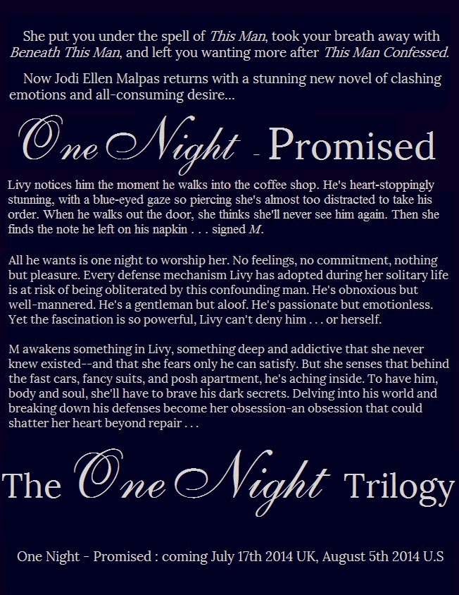 One+Night+-+Promised+Synopsis+as+book!.jpg