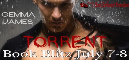 torrent book blitz