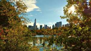Central Park | New York Top Free and Ticketed Attractions | Book FHR Blog