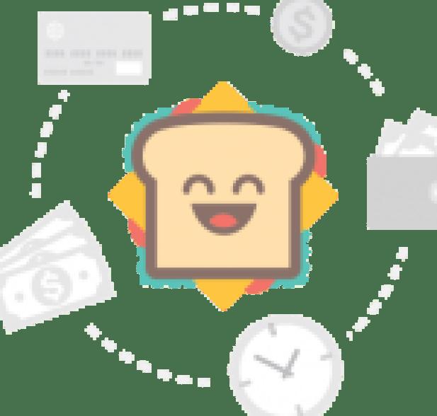 Mirza Sahiban Story Punjabi