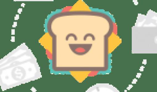Beginning and Intermediate Algebra 5th edition pdf