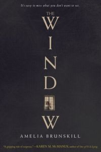 the-window-thriller-book