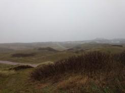 Langeoog - die Dünenlandschaft im Nebel