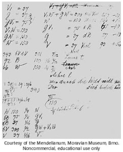 Mendel's notes on peas
