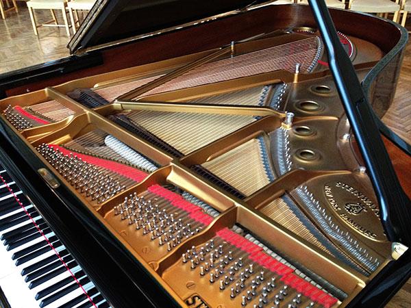 Piano iinterior