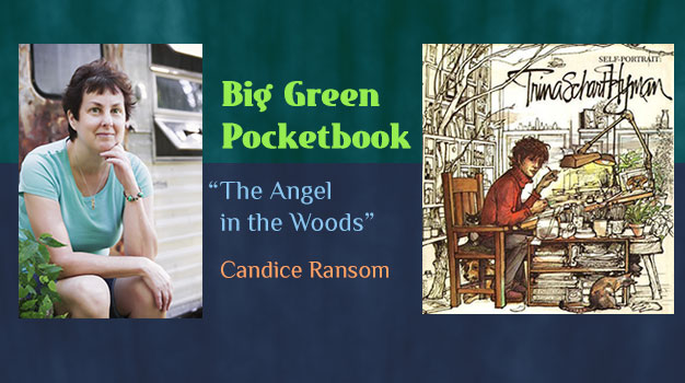 Candice Ransom The Angel in the Woods